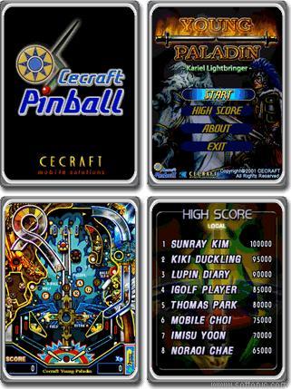 Cecraft Pinball : Young Paladin