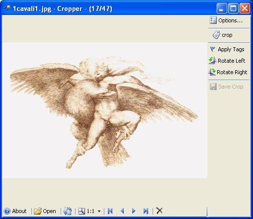 SD Cropper