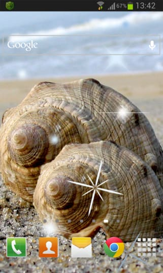 Sea shell Live Wallpaper