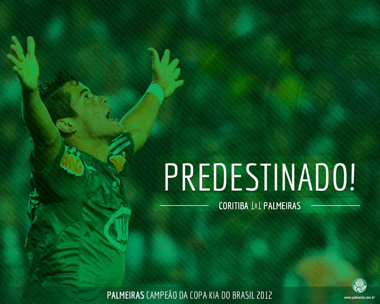 Papel de Parede do Palmeiras