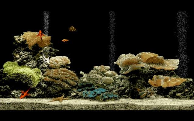 Free Aquarium Screensaver